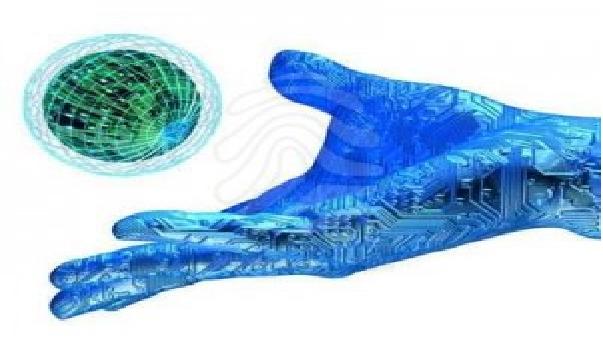 A Importância da Tecnologia para as Empresas.